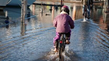 Dansk Miljøteknologi: Politikerne overser miljøproblem med overløb