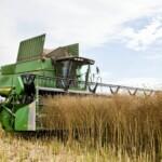 Input til klimaforhandlingerne på landbrugsområdet