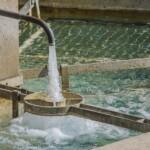 Klimaministerens svar på DMT henvendelse vedr. anvendelse af TCO i vandsektoren