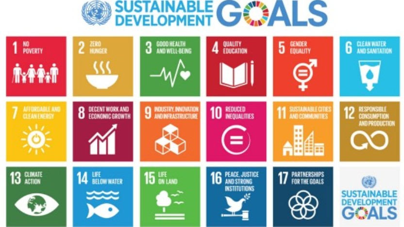 Udtalelse: Styrk indsatsen for at gennemføre FNs verdensmål