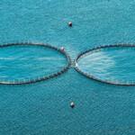 Ministres svar på DMT's henvendelse: Ser stort potentiale i højteknologisk akvakultur